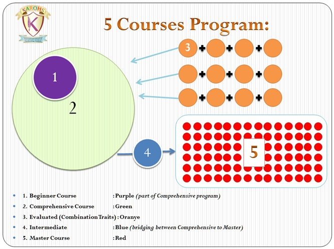 5coursesprogram